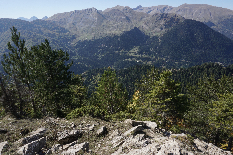 Ursa_Trail