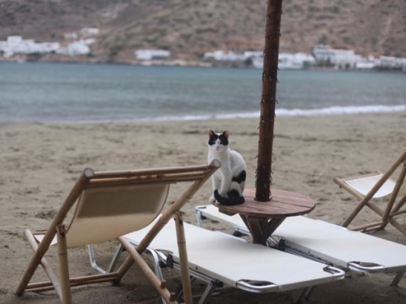 sifnos strand